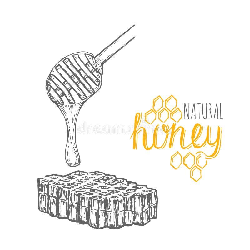 Bâton de miel et peigne tirés par la main de miel au-dessus du fond blanc illustration de vecteur