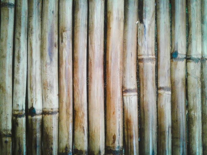 Bâton en bambou image libre de droits