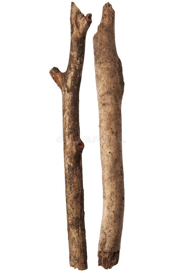 Bâtons d'arbre photo libre de droits