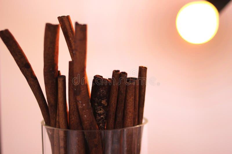 Bâtons de cannelle et de vanille photo stock