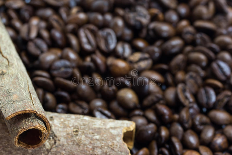 Bâtons de cannelle sur des grains de café photos libres de droits