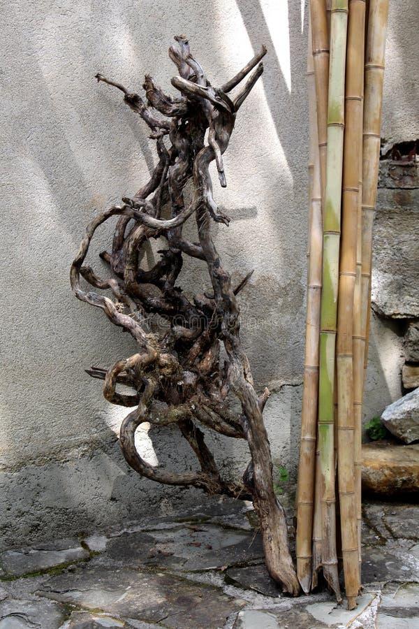 Bâtons de racine d'arbre et en bambou secs photographie stock