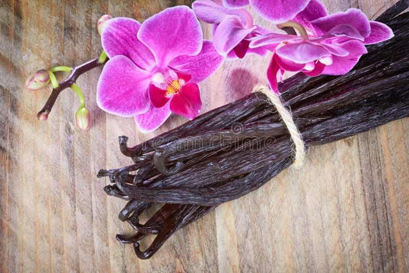 Bâtons de vanille et fleur d'orchidée images stock