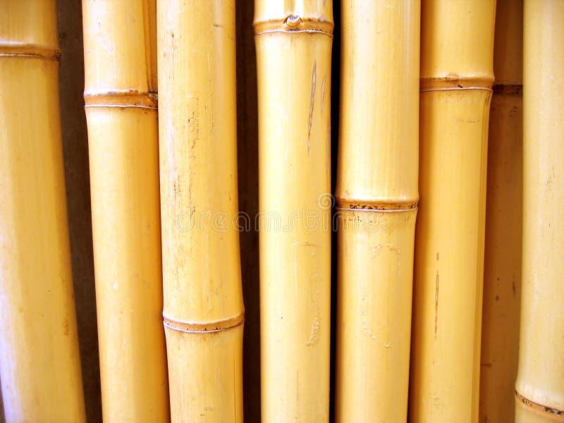 Bâtons en bambou photo libre de droits