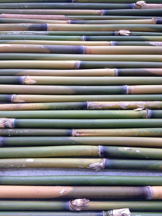 Bâtons en bambou photos libres de droits