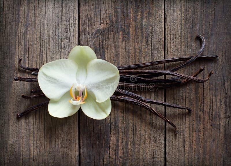 Bâtons et fleur de vanille sur le bois image libre de droits