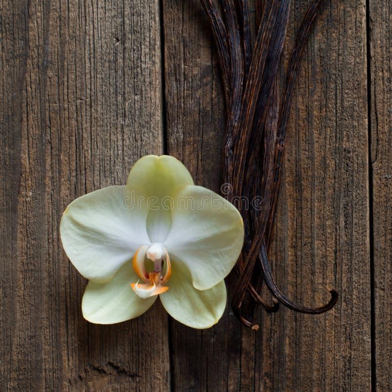 Bâtons et fleur de vanille sur le bois photo libre de droits