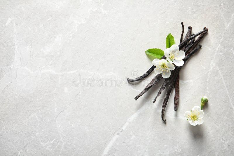 Bâtons et fleurs de vanille images libres de droits