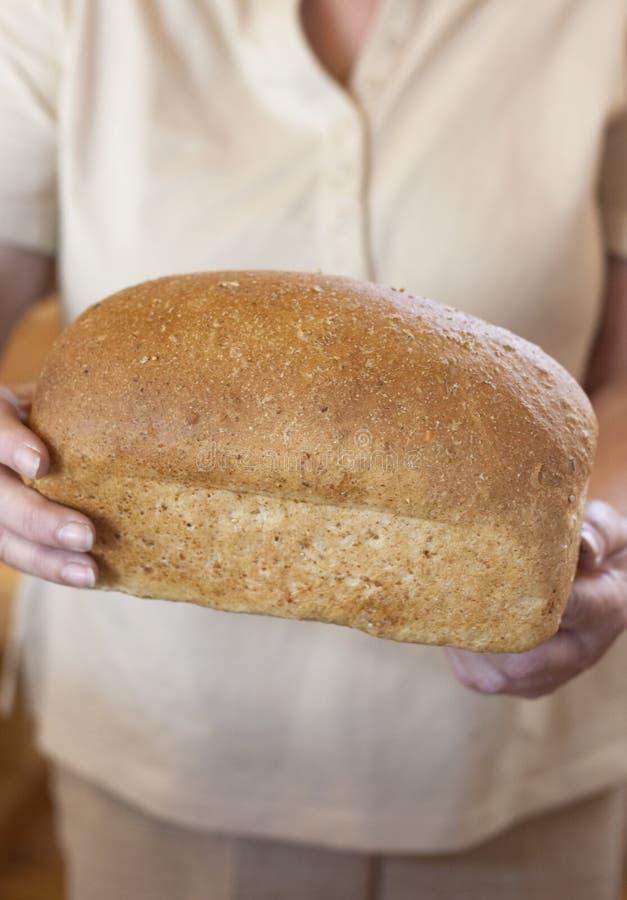 Bäcker, der frisches Laib des Vollweizenbrotes anhält lizenzfreie stockfotografie
