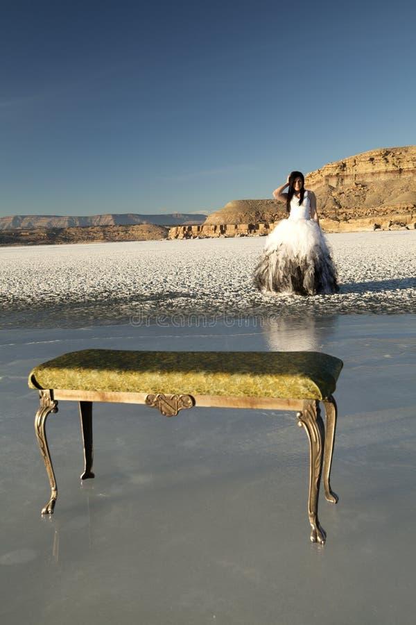 Bänk för is för formell klänning för kvinna royaltyfri fotografi