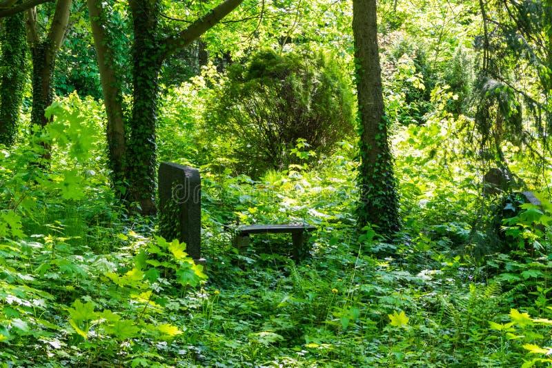 Bänk i kyrkogård arkivbilder