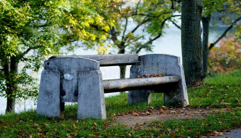 Bänk i park i höst royaltyfria foton