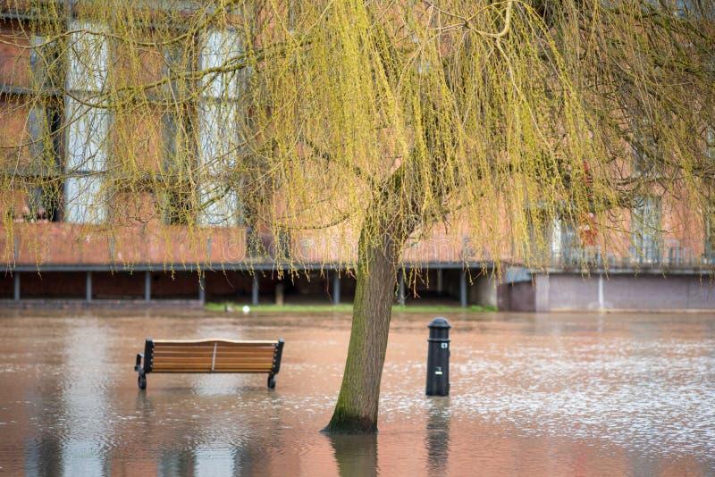 Bänk och pollare framme av stor byggnad för röd tegelsten med den översvämmade floden och trädet arkivbilder
