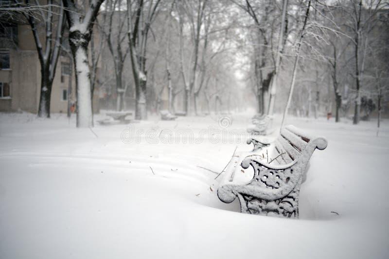 Bänkar i parkera som täckas med snö arkivbild