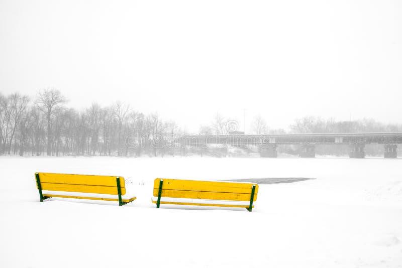 Bänkar i vinter arkivfoton