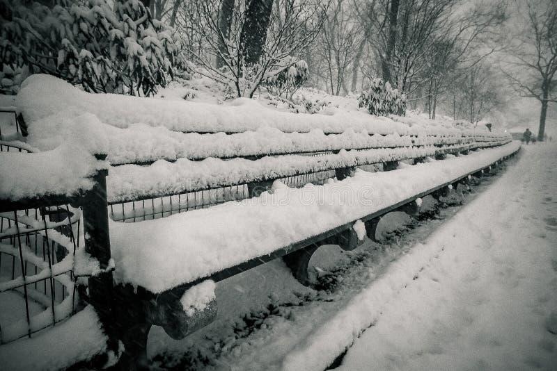 bänkar som räknas snowing vinter för parkplatssnow royaltyfria bilder