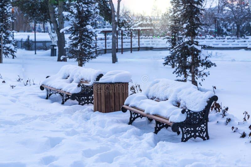 Bänkar som täckas med insnöat, parkerar under vinter fotografering för bildbyråer