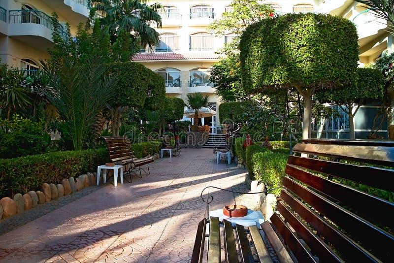 Bänke an der Pflasterung mit dekorativen Bäumen im Äußeren Bella Vista Resorts in Hurghada stockfotos