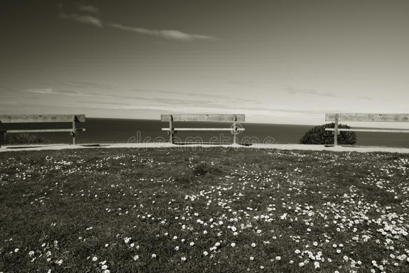 Bänke in einer Linie auf einer Klippe über Atlantik in Schwarzweiss, bidart, Frankreich stockfoto