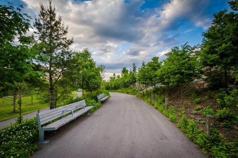 Bänke entlang einem Gehweg an Corktown-Common, in Toronto, Ontario stockbilder