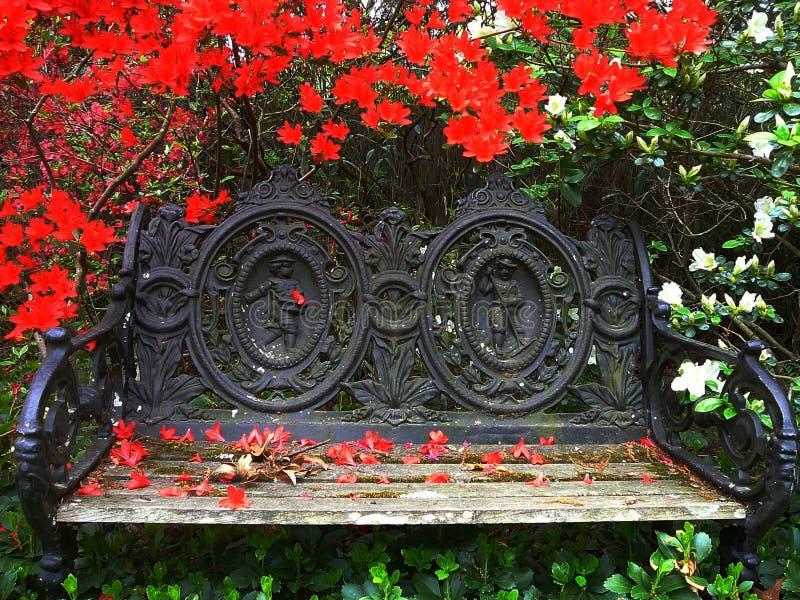 bänkträdgård arkivbild