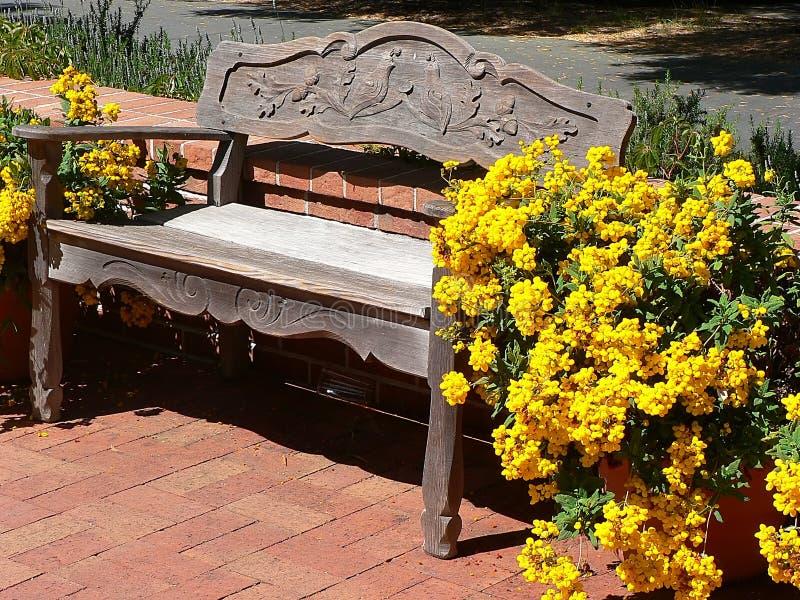 bänkträdgård royaltyfri bild