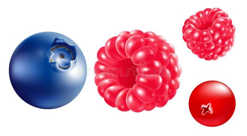 bär Ð-¡ förlorar-upp Hallon blåbär, jordgubbar hav för close för bakgrundsbärbuckthorn upp stock illustrationer