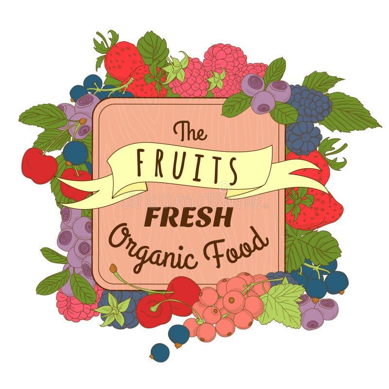 Bär blandar ramen av körsbäret, vinbäret, blåbäret, björnbäret, ras vektor illustrationer