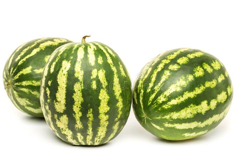 Bär för tre moget vattenmelon på vit bakgrund royaltyfria bilder