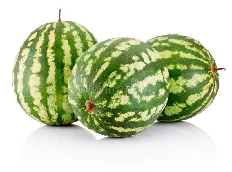 Bär för tre moget vattenmelon som isoleras på vit bakgrund royaltyfri fotografi
