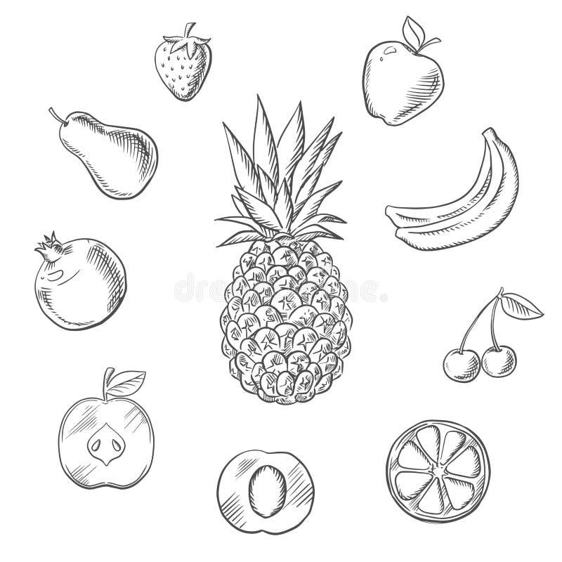 Bär frukt bär skissar uppsättningen vektor illustrationer