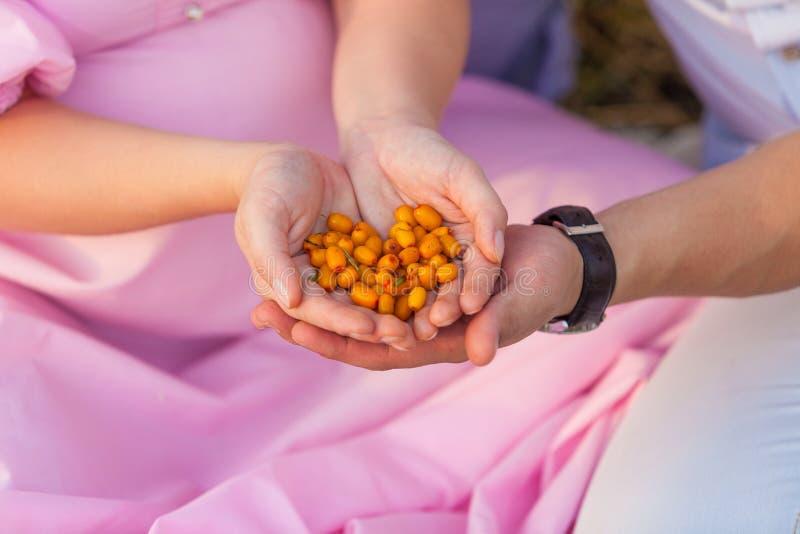 Bär frukt som är ny, mat, hand, sunt som är söt, hand, sommar fotografering för bildbyråer