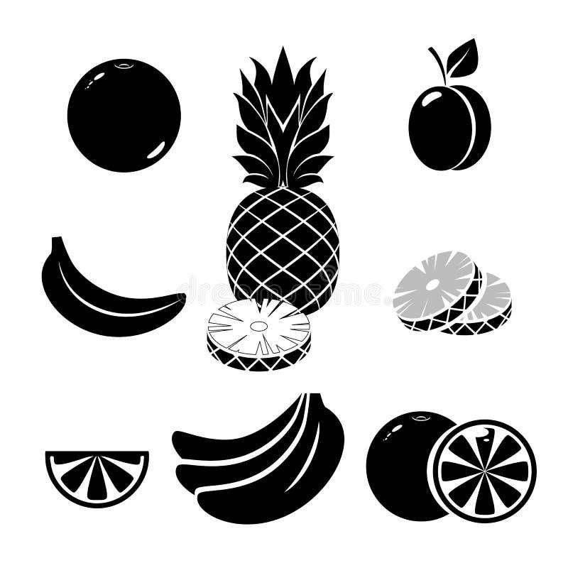 Bär frukt symboler på vit bakgrund Ljust ljus för vektorillustration, exponering Bakgrund med exponeringen, strålar Det kan vara  vektor illustrationer