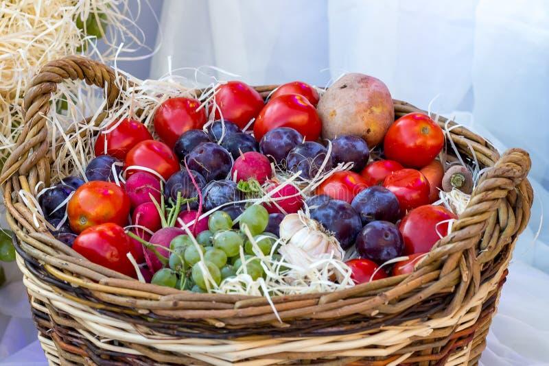 Bär, grönsaker och frukter i en korg på Thanksgiving_ arkivfoto
