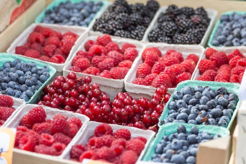 Bär hallon, blåbär: Olika sorter och färger för bär, i askar, på försäljning arkivfoton
