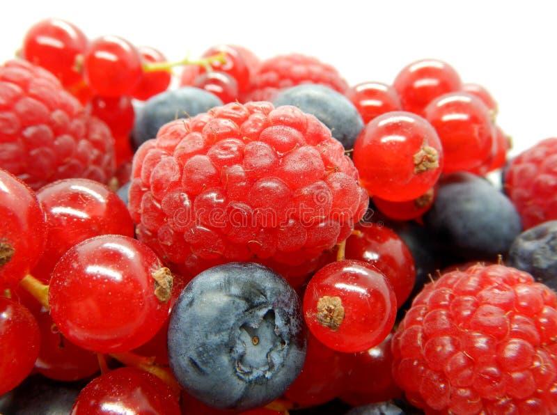 Bär i bunken, blandad blandning av frukter, hallon, röd vinbär, blåbär mot en vit bakgrund royaltyfria foton