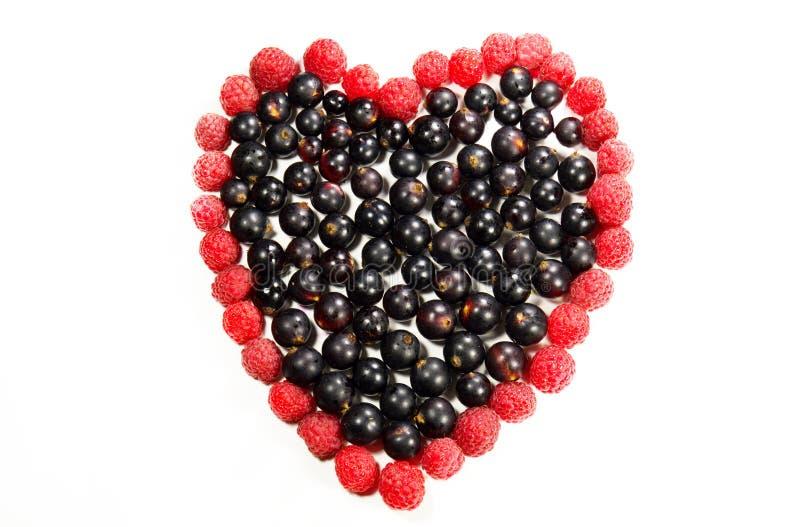 Bär i formen av hjärta royaltyfri bild