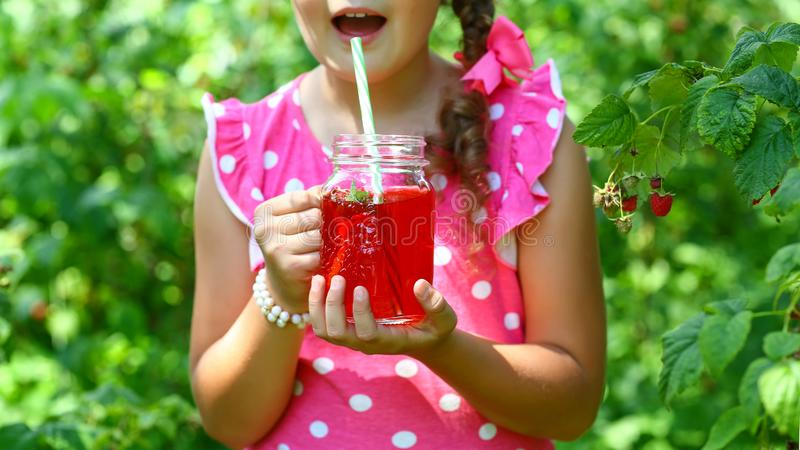 Bär och frukt  Bästa sikt, autentisk livsstilbild Säsongsbetonad produc för skördskördlokal royaltyfria bilder