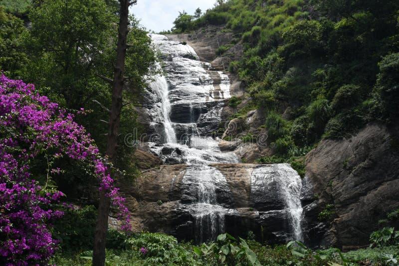 Bär Shola-Fallansicht bei Kodaikanal, Tamil Nadu lizenzfreies stockbild