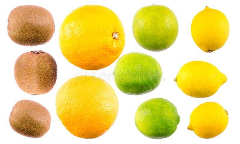 bära fruktt den tropiska mixen arkivfoton