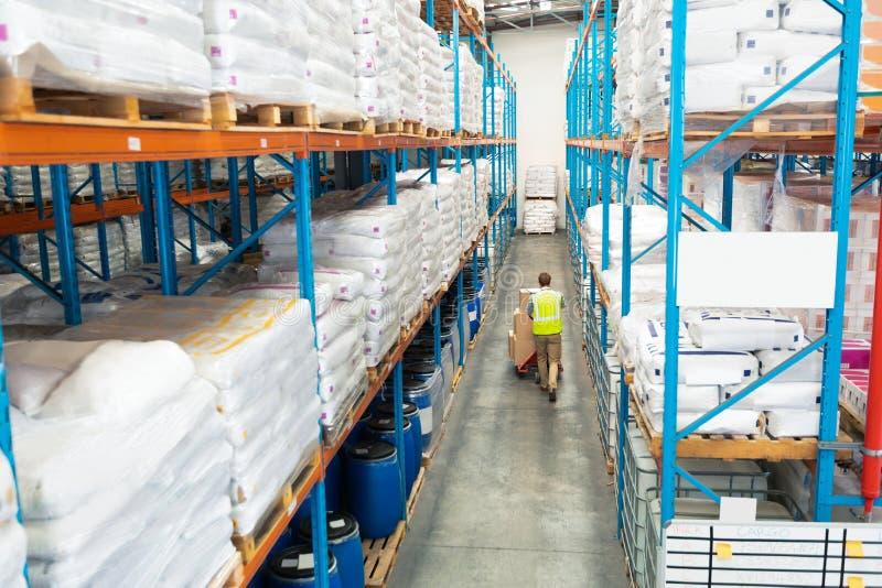 Bärande askar för arbetare på palettstålar i lager arkivfoton