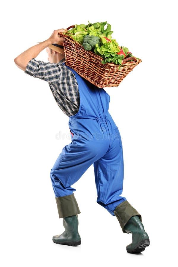 bärande bonde för tillbaka korg hans grönsaker arkivbild