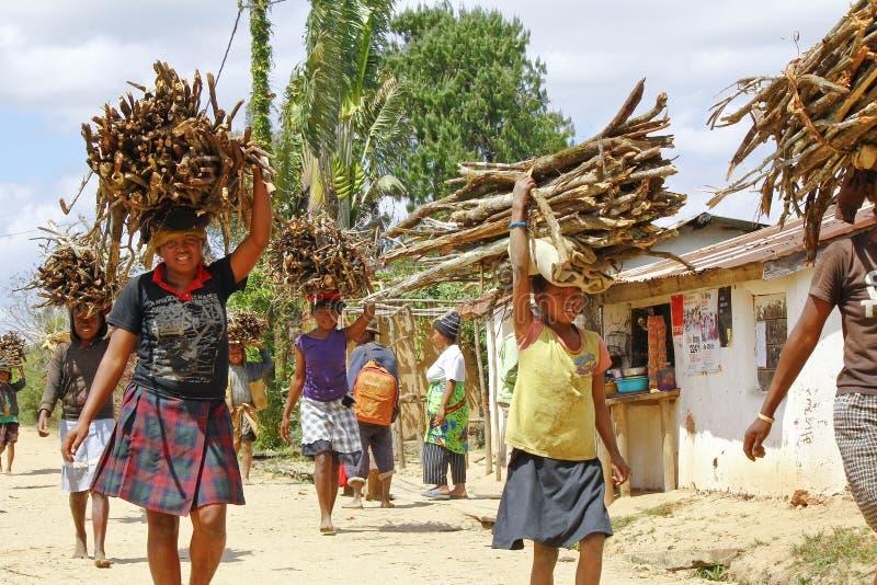 Bärande filialer för fattigt malagasy folk på huvud - armod royaltyfri fotografi