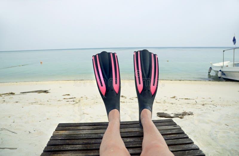 Bärande flipper för fotselfiekvinna som är klara för dykapparatdykning arkivbild
