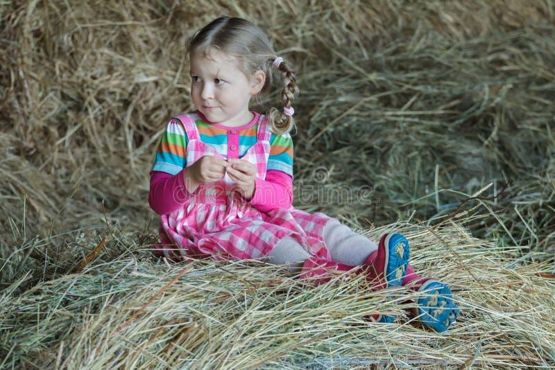 Bärande klänning- och gummikängor för liten flätad flicka som sitter i landslantgårdhayloft på torkat löst gräshö arkivfoto