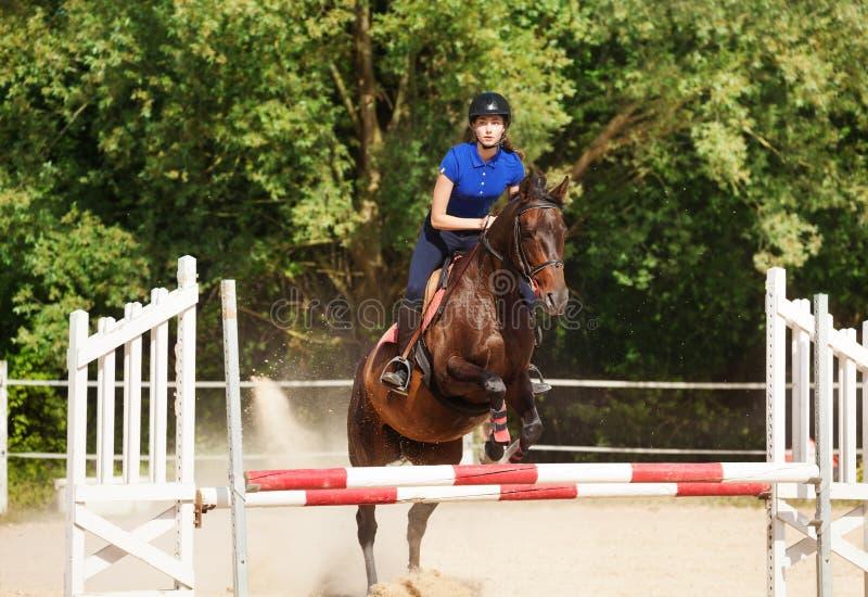 Bärande skicklig ryttarinna för banhoppninghäst under utbildning royaltyfri foto