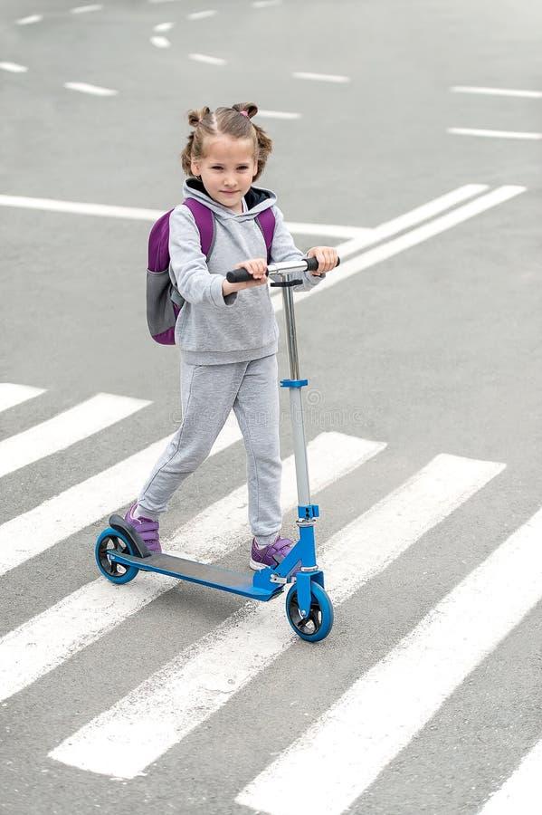 Bärande sparkcykel för skolflicka och korsaväg på väg att skola Sebratrafik g?r v?gen i staden Fot- passera en övergångsställe arkivfoton