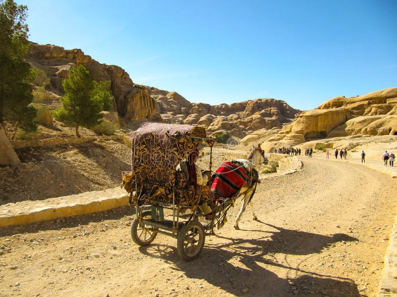 Bärande turister för en hästvagn på den dammiga vägen på solnedgången i Petra, Jordanien Petra är en av de största arkeologiska p arkivfoton