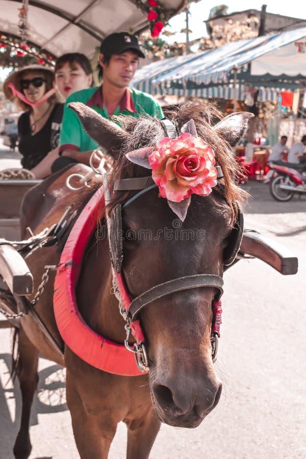 Bärande turister för hästvagn i den Mekong deltan Vietnam arkivbild