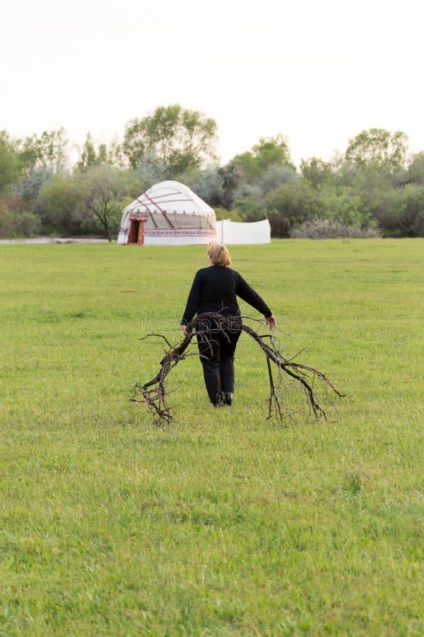 Bärande vedträ för kvinna i en yurt royaltyfri foto
